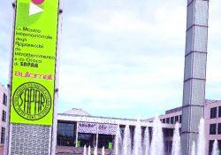 Programma eventi Enada Rimini 2021
