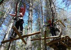 I percorsi acrobatici dei parchi sottoposti a severi controlli